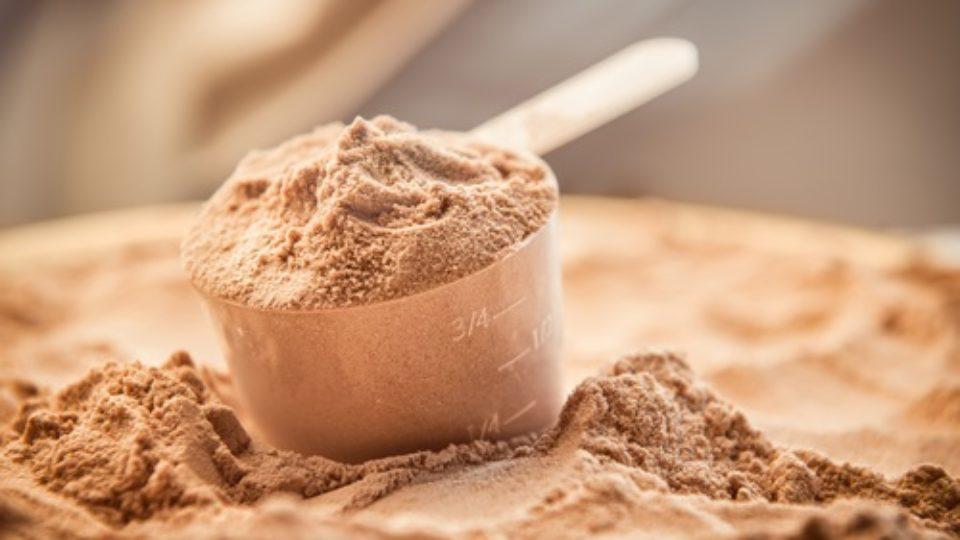 אבקות חלבון – מיתוסים – mtc.org.il